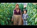 Turkish village life. Життя в ту...mp3