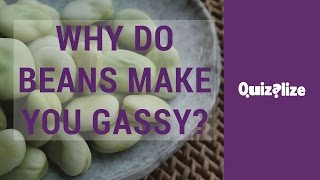 Why do beans make you gassy?