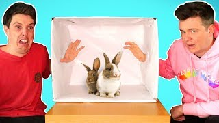 WHATS IN THE BOX!? Ft. Lazarbeam, Muselk,  Loserfruit, Crayator, BazzaGazza and Marcus