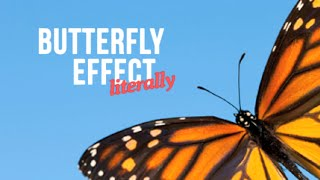 The Butterfly Effect, Literally