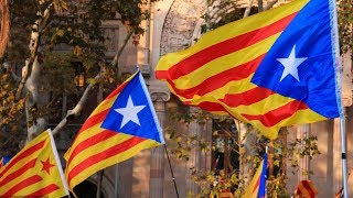 Top Catalan pro-independence politician freed on bail