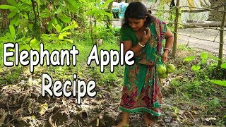 Elephant Apple Recipe - Elephant Apple cook in village - Prawn Recipe With Elephant apple