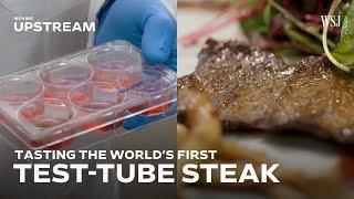 Tasting the World's First Test-Tube Steak