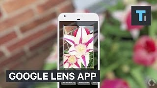 Google just showed off an incredible camera app that identifies real-world objects