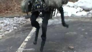 DARPA/Boston Dynamics  Big Dog