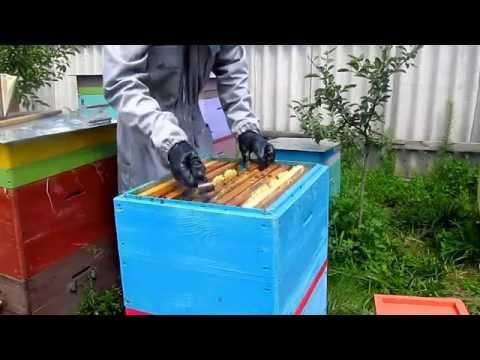 Пчелоудалитель своими руками