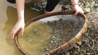 diamond finder searches gemstone seeds in Pailin province