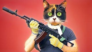 Cookie schießt mit AK-47