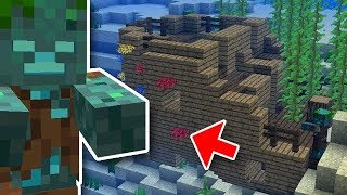 New Minecraft Mob, Shipwrecks, and More