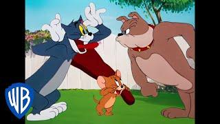 Tom & Jerry | Classic Cartoon Compilation | Tom, Jerry, & Spike