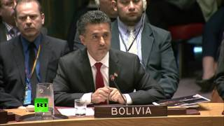 US became investigator & judge; this is violation of intl law – Bolivia UN envoy on Syria strike