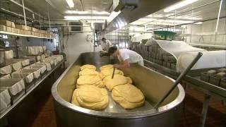 The Art of Cheesemaking