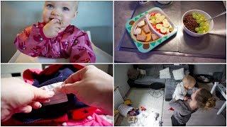 Kleidung für die Kita markieren  ❘ Eisfach wird  (ENDLICH!) abgetaut ❘ MsLavender