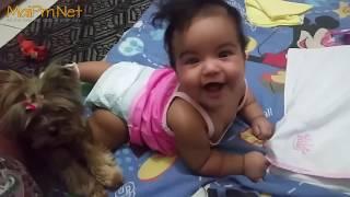 Dogs Protecting Babies Kids - Loyal Dog Doesn
