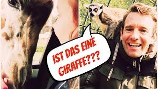 Mit Kindern im Freizeitpark #2 I SERENGETI PARK Hodenhagen I Vlog Die Imhofs
