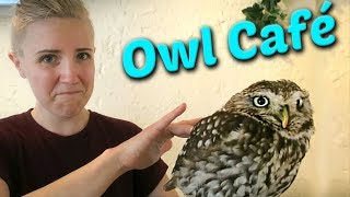 I Had Coffee with an Owl!