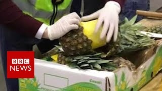 Cocaine found in fresh pineapples - BBC News