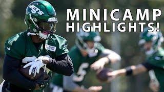 Minicamp Highlights!