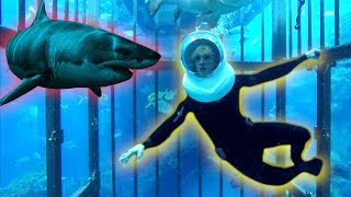 TRAPPED IN A CAGE WITH GIANT SHARKS OHMYGAWWWWDDDD!
