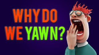 Why Do You Yawn When Others Yawn?
