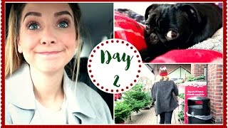 FESTIVE FOOD SHOPPING | VLOGMAS