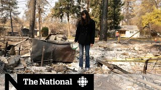 The ruins of Paradise: Inside the California fire zone | Dispatch