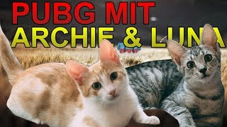 PUBG mit Archie & Luna | Streamhighlights #4