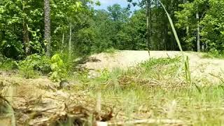 Jumping at Pocahontas State Park