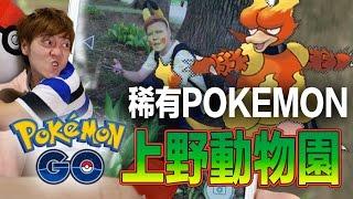 """【Pokémon Go x 逛日本】動物園會有什麼樣的Pokemon呢?看最新攻略說上野動物園還被稱作""""◯◯之森""""!"""