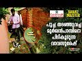 Vava Suresh rescues a Cobra held by a Ca...mp3