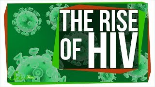 How a Sick Chimp Led to a Global Pandemic: The Rise of HIV