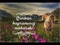 Qurban Bayramınız Mübarəkmp3