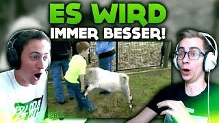 ES WIRD IMMER BESSER...! | WTF VIDEOS
