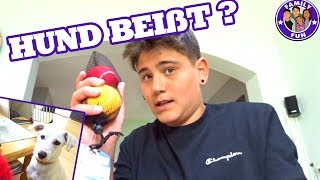 CIHAN RASTET AUS UND HUND BEIßT !! Daily Vlog #77 Our life FAMILY FUN