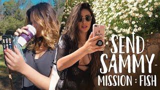 Sending Sammy to the FISH MARKET | Shay Mitchell
