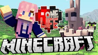 Kittens & Bunnies | Ep. 18 | Minecraft One Life