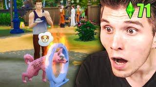 Die FEUERPROBE  ☆ Sims 4 Hunde & Katzen