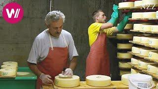 Cheesemaking - a visit at a Swiss dairyman