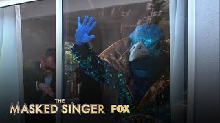 The Clues: Peacock   Season 1 Ep. 8   THE MASKED SINGER