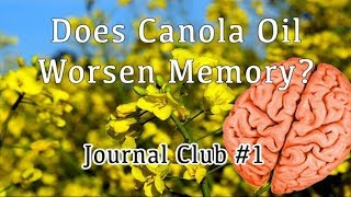 Does Canola Oil Make You Stupid? No. (Obviously) - Journal Club 1