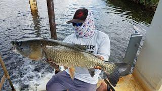 BIG Fish Caught on TINY Hook!!!!  Micro Fishing Magic!