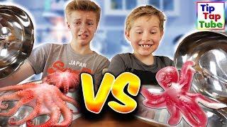 GUMMY VS. REAL FOOD CHALLENGE - Tintenfisch und Schnecken! TipTapTube