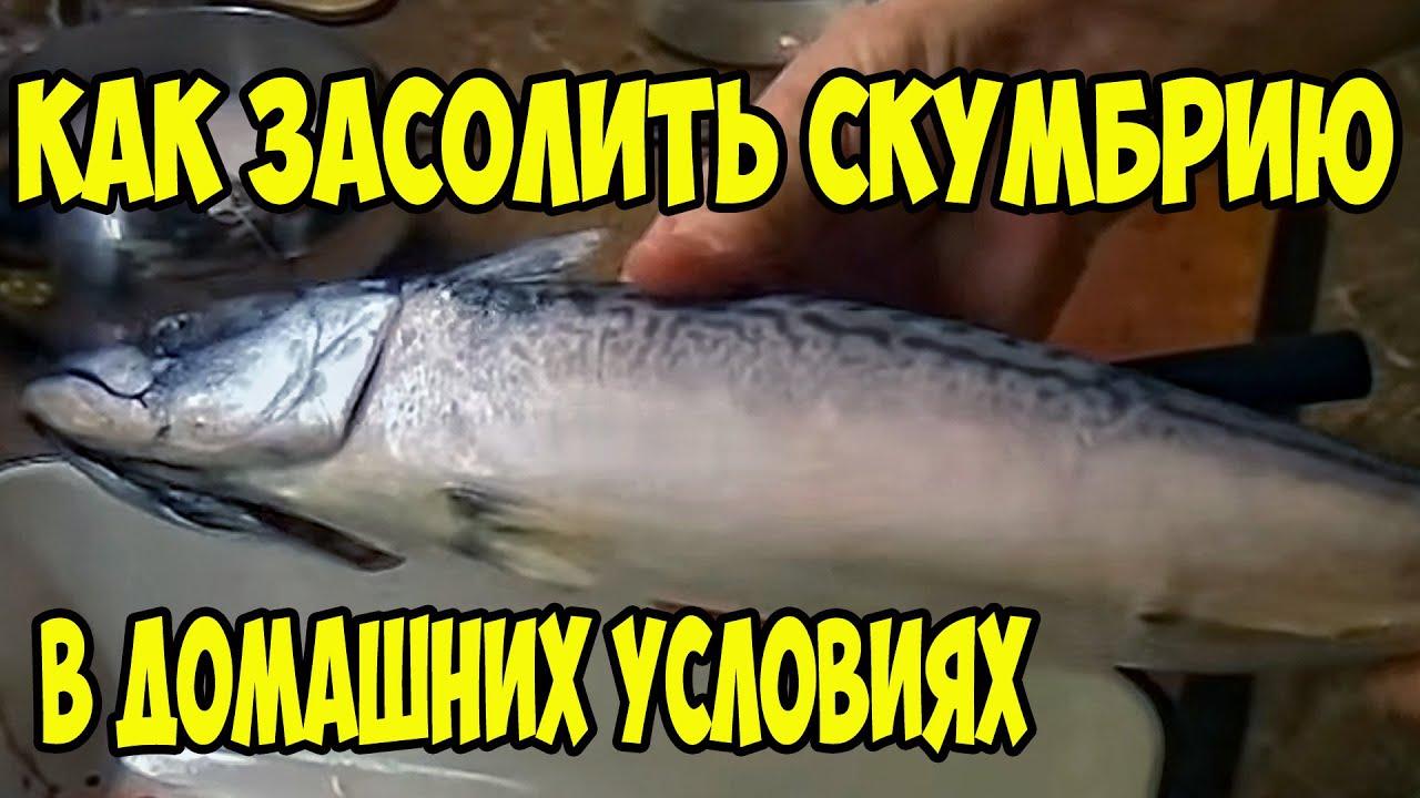 russkie-zhenshini-domashniy-seks-foto