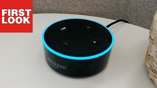 Amazon Echo Dot: Kurzer Plausch mit Alexa
