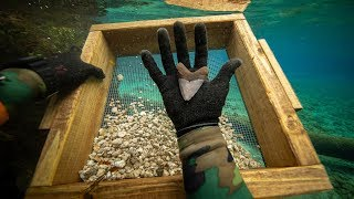 I Found a Megalodon Shark Tooth Underwater While Fossil Hunting! (How to Find Shark Teeth)