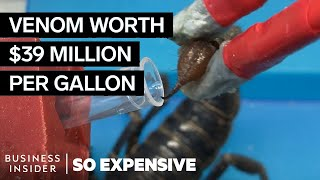 Why Scorpion Venom Is So Expensive | So Expensive