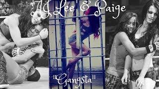 Paige/AJ Lee MV -