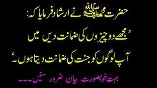 """Nabi Karim (S.A.W) ne  Farmaya """"Muje 2 chezo ki zamant de me aapko jannat ki zamant deta ho"""""""