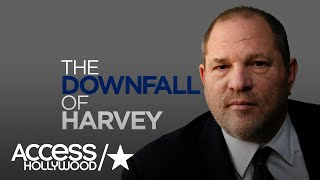 Harvey Weinstein: A Look At The Hollywood Movie Head Honcho