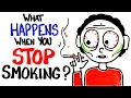 What Happens When You Stop Smoking?mp3